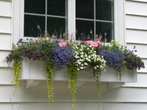 60-inch-window-box